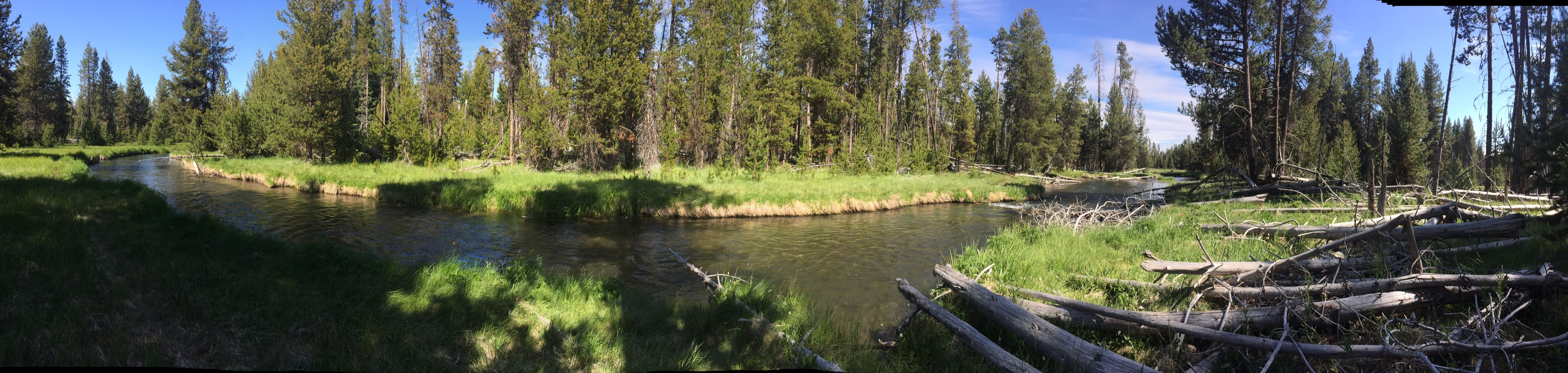 Fly Fishing the Upper Deschutes 6/13/14-6/15/14 – jdsflyfishing
