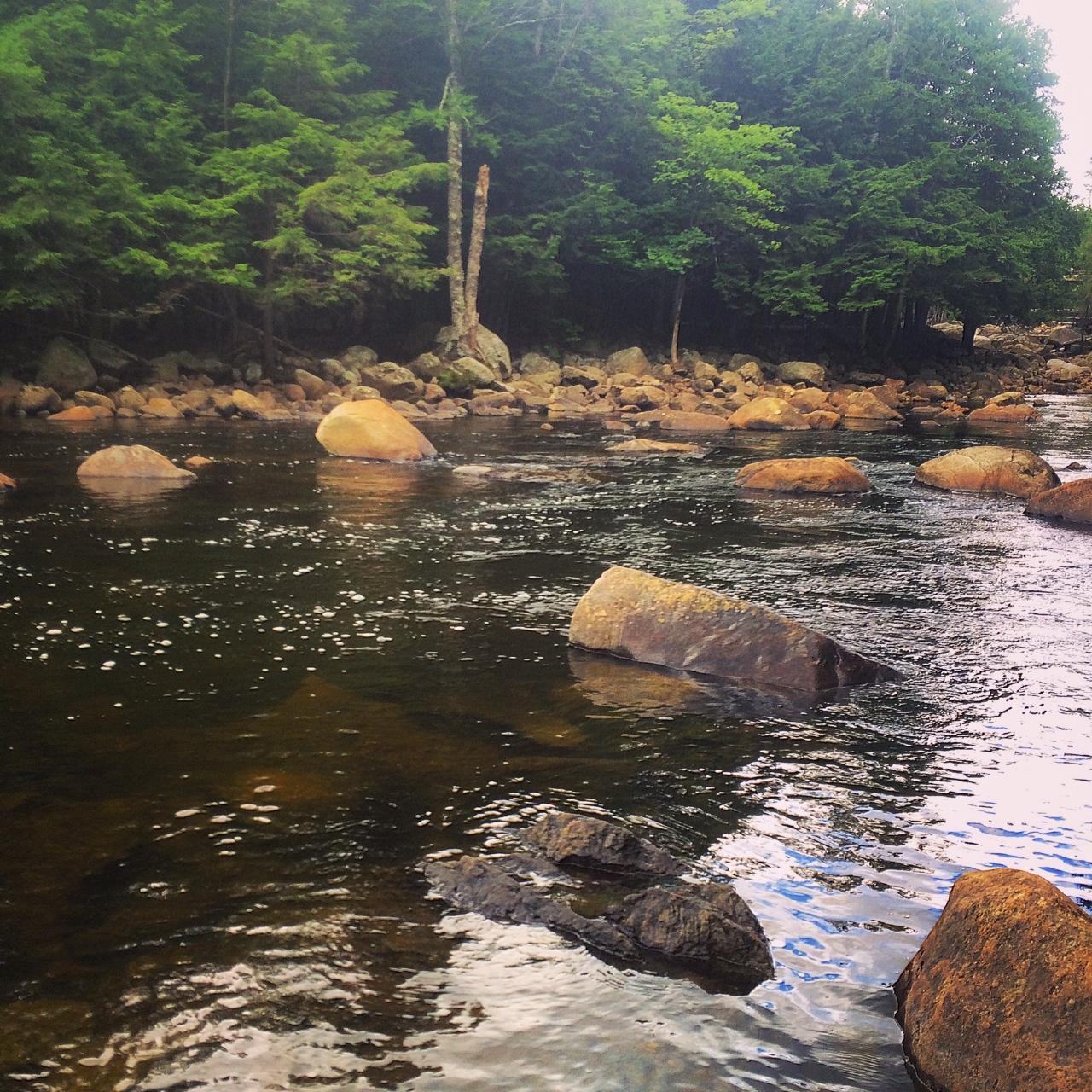 Adirondacks jdsflyfishing for Adirondack fly fishing