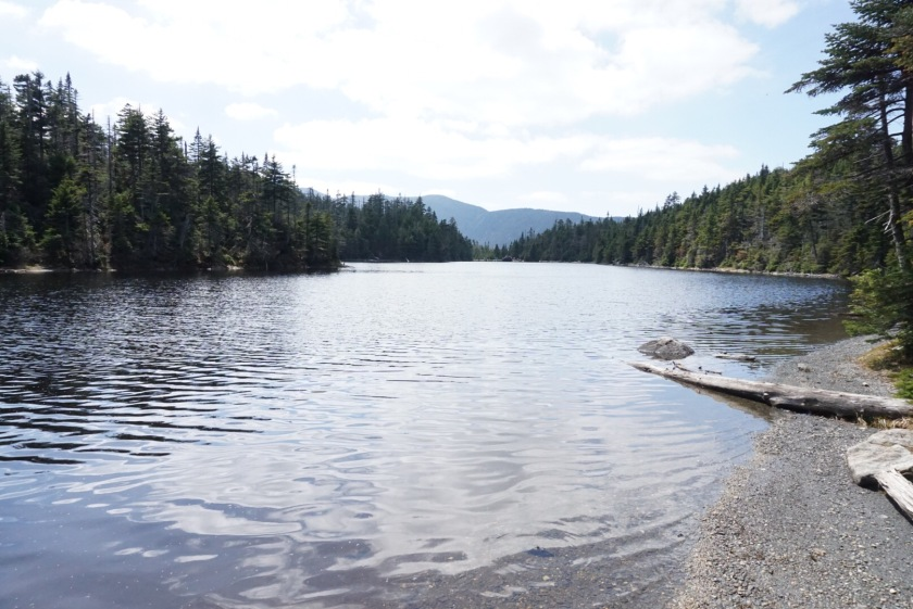 Fly fishing vermont jdsflyfishing for Vermont fishing report